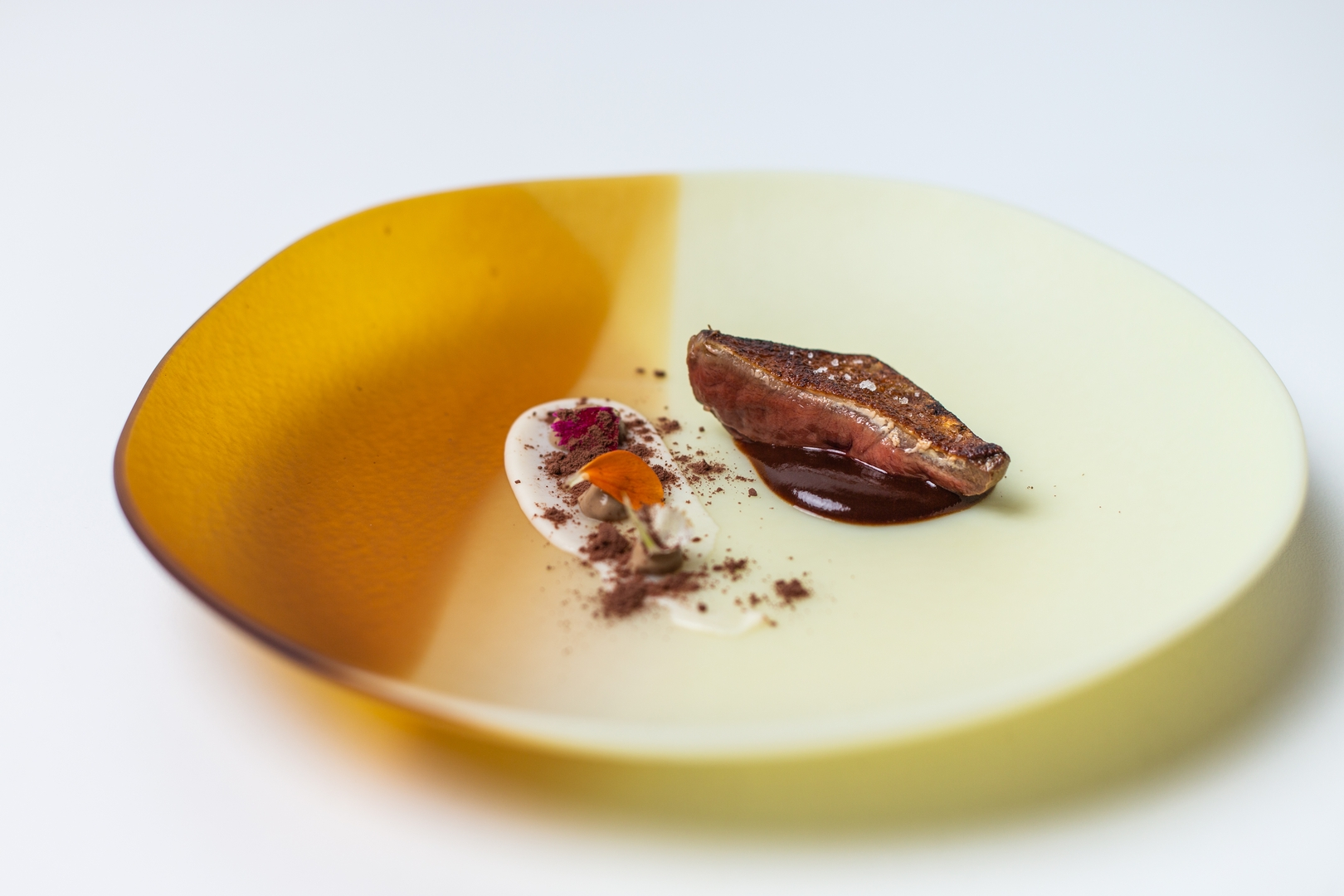 Pigueon with cocoa